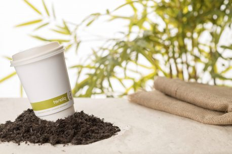 Biodegradable Paper Cups 8oz Double Wall compostable eco friendly cups